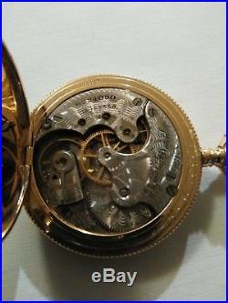 Elgin 6 size 15 jewels fancy dial (1896) Gold filled hunter case