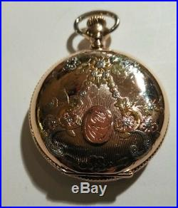 Lady Waltham Mint Fancy Dial Multi-color hunter case 16 jewels near mint